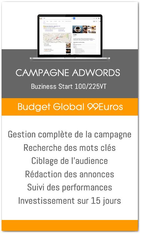 publicité annonces google adwords agence web buziness